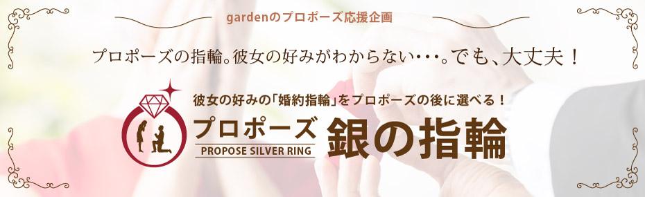 おすすめのプロポーズプランで銀の指輪