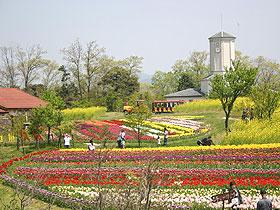 京都のサプライズ京都府農業公園