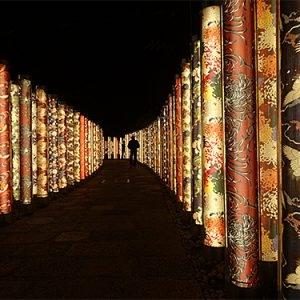 京都のサプライズキモノフォレスト