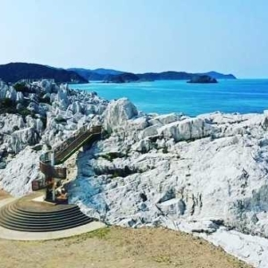 京都のサプライズ白崎海洋公園