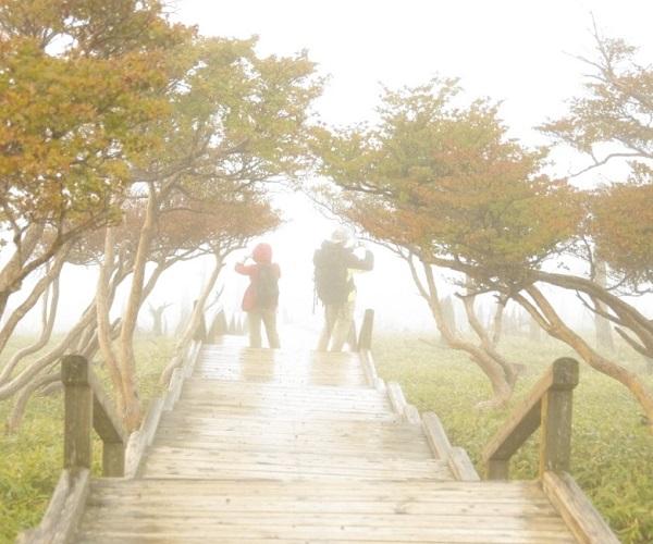 奈良でオススメのプロポーズスポットといえば大台ケ原