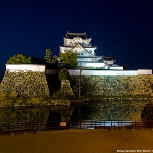 京都のサプライズ岸和田城