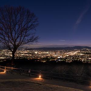 京都のサプライズ若草山